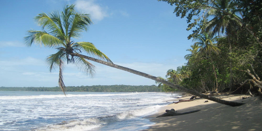 Cahuita Beach on fishing nature
